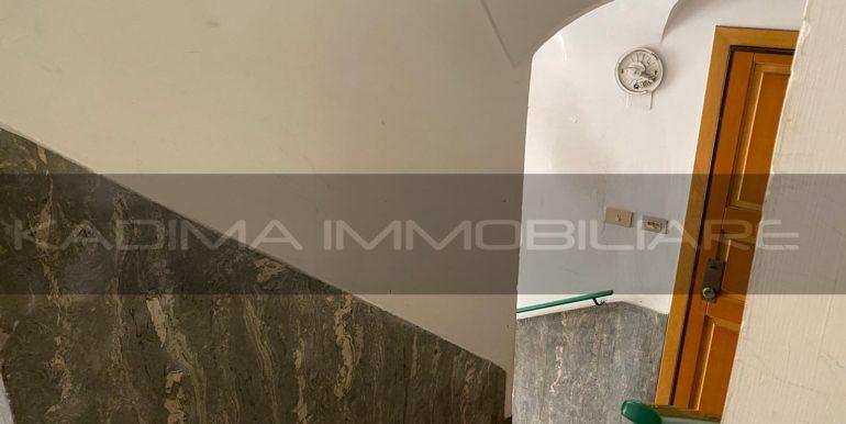 IMG-20200720-WA0056