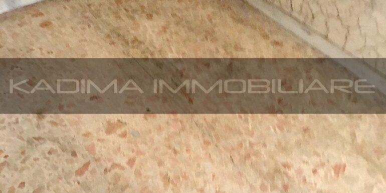 IMG-20201017-WA0001