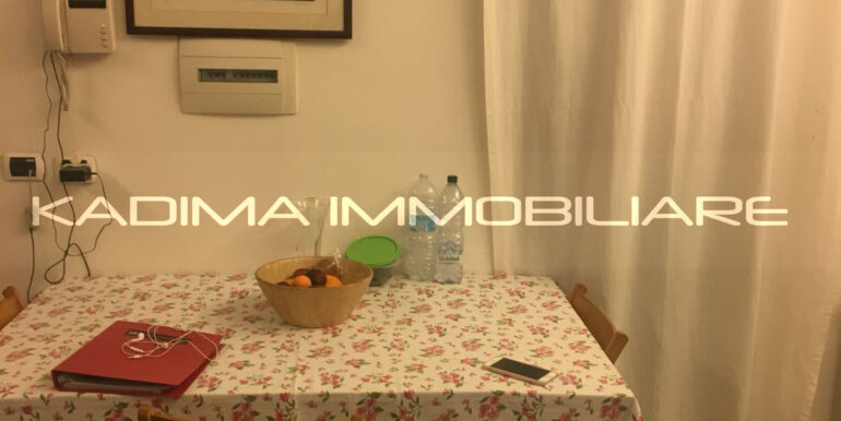 ATHOS AMMANNATO affitto (8)